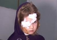 O fetiță de șapte ani a fost nenorocită pe viață de un câine fără stăpân