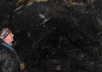 Peștera secretă cu lilieci de sub orașul Bumbești Jiu
