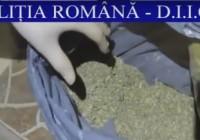 Primele imagini de la descinderile la locuințele suspecților de trafic de droguri. Ce au găsit polițiștii (VIDEO)
