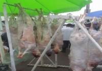 Polițiștii au confiscat peste 600 kilograme de carne