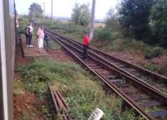 Tren blocat de un copac căzut de șine la intrarea în Târgu Jiu