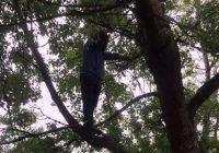 Prefectul, negociator salvator pentru un bărbat care amenința că se sinucide