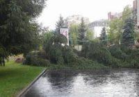 Furtuna a făcut ravagii în Târgu Jiu. Vezi ce pagube s-au înregistrat