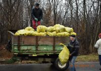 Amplă acțiune de ecologizare la Fărcășești