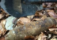 Ce a descoperit un localnic într-o pădure din Turcinești