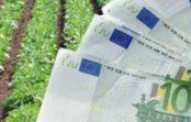 200 de afaceri vor fi finanțate cu granturi de până la 40.000 de euro. Află cum poți beneficia de acești bani